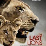 Останні леви / The Last Lions (2011)