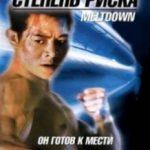 Ступінь ризику / Shu dan long wei (1995)