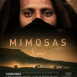 Мімози / Mimosas (2016)