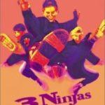 Три ніндзя / 3 Ninjas (1992)