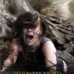 Дорога з жовтої цегли / YellowBrickRoad (2010)