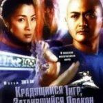 Тигр підкрадається, дракон ховається / Wo hu cang long (2000)