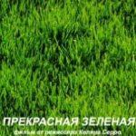 Прекрасна зелена / La belle Verte (1996)