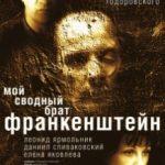 Мій зведений брат Франкенштейн / Мой сводный брат Франкенштейн (2004)