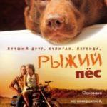 Рудий пес / Red Dog (2011)