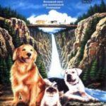 Дорога додому: Неймовірна подорож / Homeward Bound: The Incredible Journey (1992)